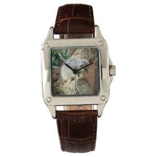 Meerkat Cat Naps, Ladies Brown Leather Watch. Watch