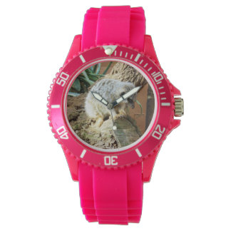 Meerkat Cat Naps, Ladies Pink Sports Watch. Watch