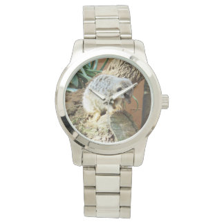 Meerkat Cat Naps, Large Silver Unisex Watch. Watch
