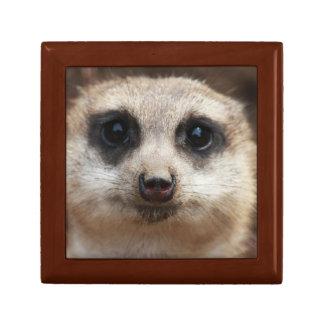 Meerkat Face Jewelry Keepsake Box