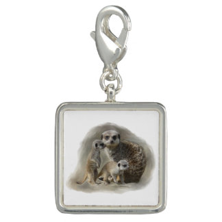 Meerkat family charms