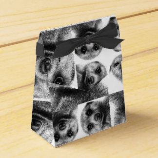 Meerkat Favor Box