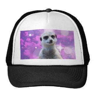 Meerkat Glitter Ball,_ Trucker Hat