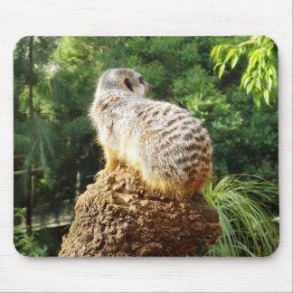 Meerkat_High_Views,_ Mouse Pad