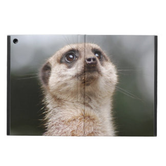 Meerkat iPad Air Cases