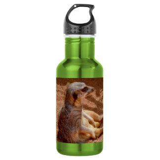 Meerkat Lazy Days, Green Aluminum Water Bottle. 532 Ml Water Bottle