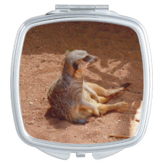 Meerkat Lazy Days, Ladies Square Compact Mirror. Mirror For Makeup