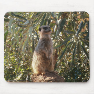 Meerkat On Guard Duty, Mouse Pad