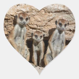 meerkat or suricate, Suricata suricatta Kalahari Heart Sticker