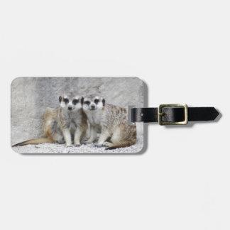 Meerkat-pair Luggage Tag