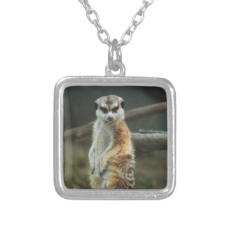 Meerkat Photo Silver Plated Necklace