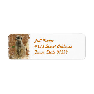 Meerkat Return Address Label