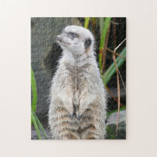 Meerkat Standing to Attention Jigsaw Puzzle