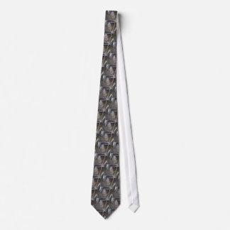 Meerkat Staring Tie