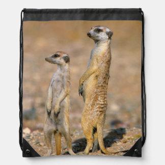 Meerkat (Suricata Suricatta) Sentinels, Karas Drawstring Bag