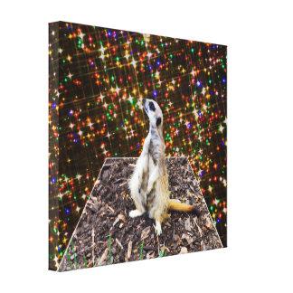 Meerkat Twinkle Stars Dimensional Art, Canvas Print
