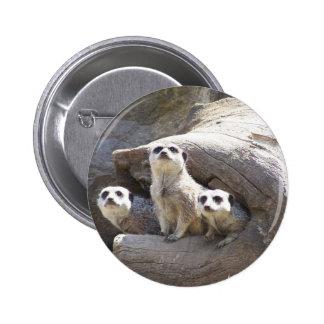 Meerkats 2 Inch Round Button