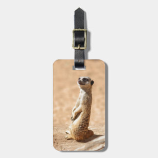 Meerkats are cool luggage tag