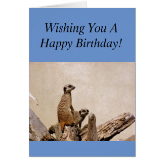 Meerkats Happy Birthday Greeting! Card