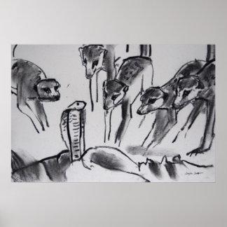 Meerkats mobbing Cobra - Art Print