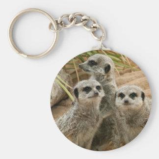 Meerkats on the lookout basic round button keychain