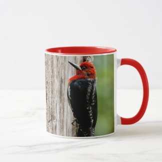 Meeting a Red-Breasted Sapsucker Mug