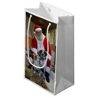 Meeting Santa Small Gift Bag