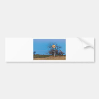 Mega Beaver Moon Bumper Sticker