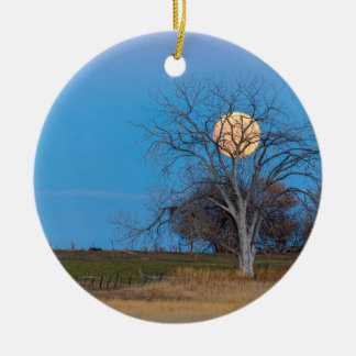 Mega Beaver Moon Ceramic Ornament