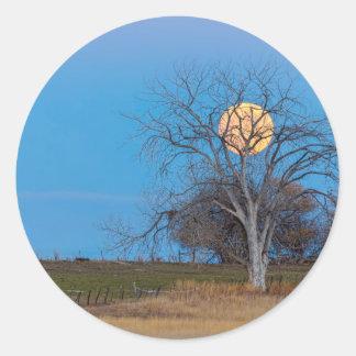 Mega Beaver Moon Round Sticker