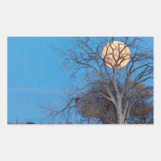 Mega Beaver Moon Sticker