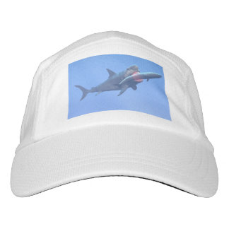 Megalodon eating a whale hat
