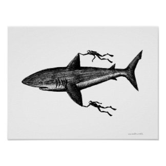 Megalodon shark and divers cool ink pen drawing poster