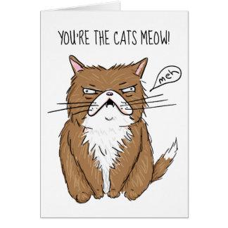 Meh Funny Grumpy Cat Drawing Card