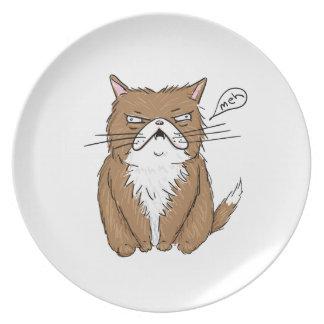 Meh Funny Grumpy Cat Drawing Plate