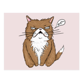 Meh Funny Grumpy Cat Drawing Postcard