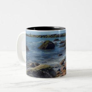 Meig's Point  Nature Center Mug
