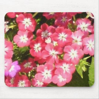 Meilleurs voeux - présentation florale tapis de souris