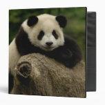 Melanoleuca d'Ailuropoda de bébé de panda géant) 7 Classeurs 3 Anneaux