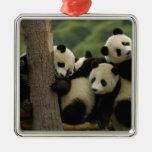Melanoleuca d'Ailuropoda de bébés de panda géant)  Décoration Pour Sapin De Noël
