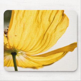 Mellow Yellow Poppy Mousepad