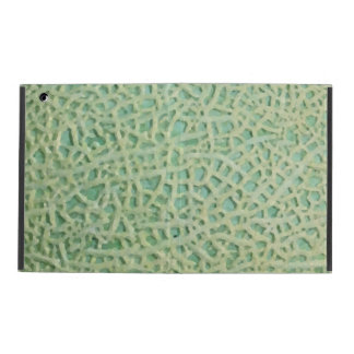 melon pattern covers for iPad
