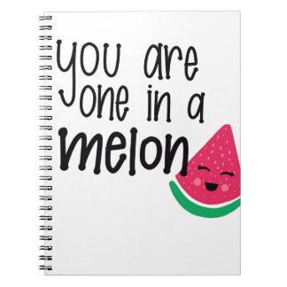 Melon Spiral Note Book