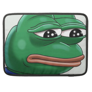 meme sleeve for MacBook pro
