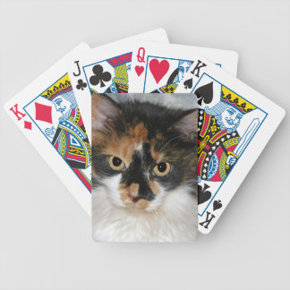 MeMeow Poker Deck