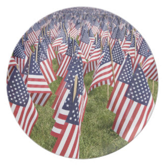 Memorial Day Flags Dinner Plates