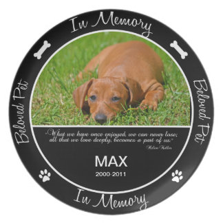 Memorial  - Loss of Dog- Custom Photo Party Plates