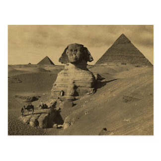Men and Camels on the Paw of the Sphinx, Pyramids Postcard