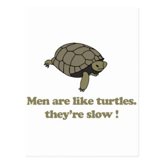 Men are like turtles, they're slow postcard