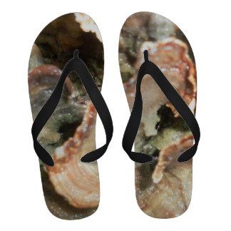 Men s Sandal Sandals
